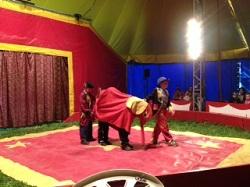 cirque (02)